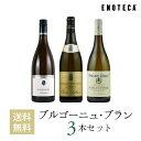 ワイン ワインセット 白 ブルゴーニュ・ブラン3本セット BB6-1 [750ml x 3]