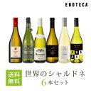 ワイン ワインセット 世界のシャルドネ6本セット WW12-2[750ml x 6] 送料無料