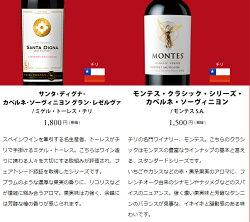 ワインワインセットパーティーパック赤だけ10本AQ9-1[750mlx10]送料無料
