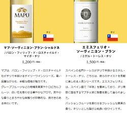 ワインワインセットパーティーパック白だけ10本BQ9-1[750mlx10]送料無料