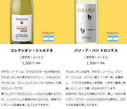 ワインワインセットパーティーパック白だけ10本BQ10-1[750mlx10]送料無料