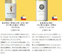 ワインワインセットパーティーパック白だけ10本BQ6-3[750mlx10]
