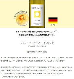 夏の食卓を彩る白ワイン6本セットWW7-1[750mlx6]