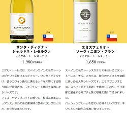 ワインワインセットパーティーパック白だけ10本BQ1-1[750mlx10]送料無料