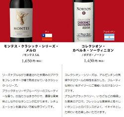 ワインセットENOTECAパーティーパック(赤白泡ワイン10本)PP5-1グルメ大賞2018「ワインセット」部門受賞!ミックスMIX飲み比べセット母の日