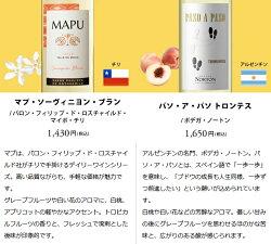 ワインワインセット周年記念セット豪華シャンパーニュ入りパーティーパック赤・白・泡12本RS2-1[750mlx12]送料無料