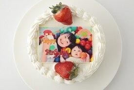 写真プレート付きデコレーション 5号サイズ 写真ケーキ 誕生日ケーキ バースデー ケーキ ホールケーキ ショートケーキ いちご フルーツ 子供 大人 お取り寄せスイーツ サプライズ 記念日プレゼント お菓子工房アントレ
