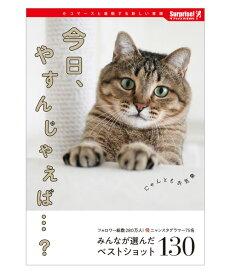 今日、やすんじゃえば…? | サプライズBOOK 猫 癒し インスタグラマー キャット ネコ スター 有名猫