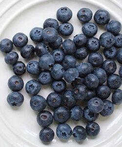 自然農法 VITAFOOD(バイタフード) 樹の上完熟 冷凍フルーツ 冷凍ブルーベリー 240g×12パック 送料無料 Vitamix バイタミックス スムージー 便利パック【代引不可アイテム】