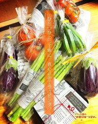 九州野菜のギフトVegeBox