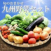 おどろきっちん九州野菜セット_おどろき野菜