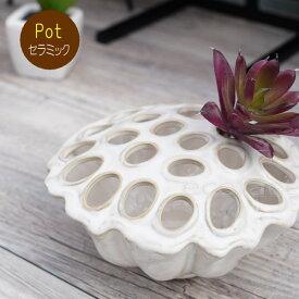 ポット 鉢 植木鉢 プランター おしゃれ 陶器 ホワイト ロータスボウル8 アッシュグレイ フラワーベース ガーデニング 園芸
