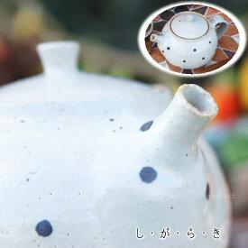 おしゃれ 急須 ティーポット 400cc「ドット白」信楽焼(しがらきやき) スカーレット 陶器 焼物 丸十製陶 日本製 キッチン 小物 食器 古民家カフェ 茶器
