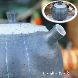 おしゃれ 急須 ティーポット 500cc「ストライプ」信楽焼(しがらきやき) スカーレット 陶器 焼物 丸十製陶 日本製 キッチン 小物 食器 古民家カフェ 茶器