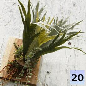 フェイクグリーン ハンギング 大型 壁掛け コウモリラン(ビカクシダ)コロナリウム 人工観葉植物 おしゃれ ウォールアート 造花 壁面緑化 パネル ボード アートフレーム アレンジメント 飾り 57cm