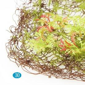 ツイッグ モスマット 苔 壁面緑化 パネル ボード アートフレーム アレンジメント 飾り 人工観葉植物 おしゃれ ウォールアート 造花フェイクグリーン