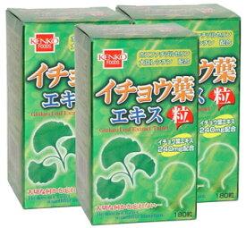 イチョウ葉エキス粒(健康フーズ)(3本セット) / サプリメント 同梱区分J
