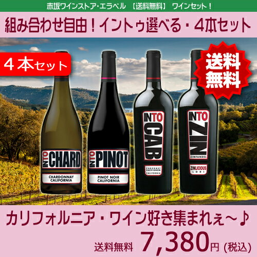【送料無料】【組合せ自由】イントゥ・4本セットアメリカ カリフォルニアワイン セットワイン 赤ワインセット 白ワインセット ミックス