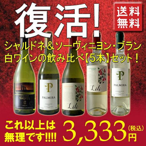 """【復活!!】【送料無料】【第4弾】美味しいデイリーワイン♪シャルドネ&ソーヴィニョン・ブラン""""採算度外視""""白ワイン飲み比べ5本セット!1本当たり667円これ以上はもう無理です・・・ワインセット チリ"""
