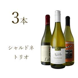 【送料無料】エラベル定番売れ筋ワインからピックアップ!シャルドネ・トリオワイン セット カリフォルニア フランス ラングドック チリ 白ワイン