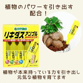 植物用活力液 リキダス アンプル HYPONEX 園芸用品 便利 園芸グッズ ハイポネックス ジャパン