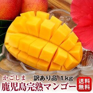 食品 フルーツ 果物 マンゴー 訳あり 安い 完熟 鹿児島 大盛り 1kg ご家庭用 加工用 規格外 アップルマンゴー【クール便発送/送料無料】一部の地域を除く
