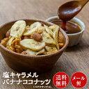 塩キャラメル バナナココナッツ 100g×1袋 バナナチップス ココナッツ バナナチップス キャラメリゼ アーモンド ナッ…
