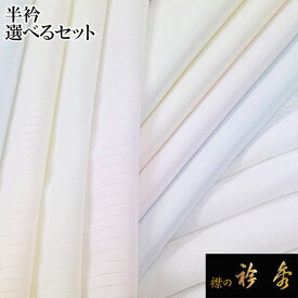 送料無料 半衿 半襟 はんえり 2枚セット 選べる 白 カラー 塩瀬 絽 紋綸子 植物由来繊維 キュプラ ポリエステル 冬 夏 洗える 日本製 襟の衿秀 えりひで 衿秀