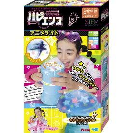 ハピエンス アニメライトおもちゃ こども 子供 女の子 ままごと ごっこ 作る 5歳