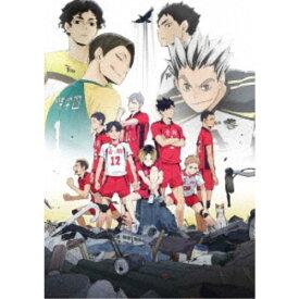 OVA『ハイキュー!! 陸 VS 空』 【DVD】