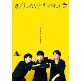 TWENTIETH TRIANGLE TOUR vol.2 カノトイハナサガモノラ 【DVD】