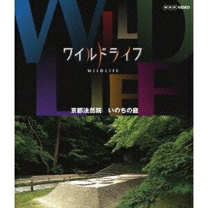ワイルドライフ 京都法然院 いのちの庭 【Blu-ray】