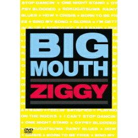 ZIGGY/BIG MOUTH 【DVD】