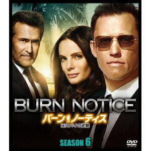 バーン・ノーティス 元スパイの逆襲 SEASON6 SEASONS コンパクト・ボックス 【DVD】