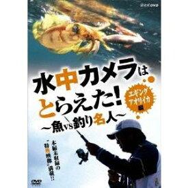 水中カメラはとらえた! 魚 VS 釣り名人 エギング アオリイカ編 【DVD】