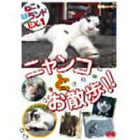 ねこ(猫) ざ ランド エクストラ(EX) 1 ニャンコとお散歩!! 【DVD】