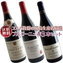 【送料無料】ブルゴーニュ赤ワイン3本セット(A) コスパ抜群の優良生産者を厳選