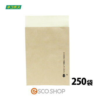 250 bags with the business bag cat POS correspondence (easy cut processing) tape to deliver to
