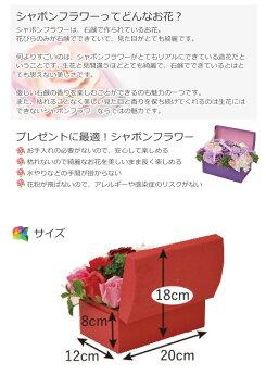 シャボンフラワーハーモニーSBL-115(ギフトプレゼントお祝い石鹸で出来た花石鹸フラワー石鹸フラワーフラワーギフト造花人気かわいい)(送料無料)