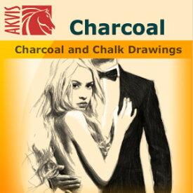 【35分でお届け】AKVIS Charcoal Home 3.0 スタンドアロン【shareEDGEプロジェクト】【ダウンロード版】