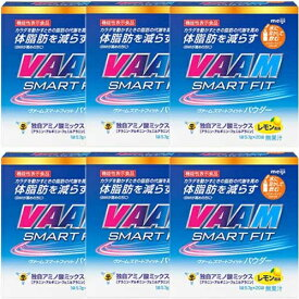 ヴァーム VAAM ヴァーム スマートフィットウォーターパウダー レモン風味 20袋 5.7g/1袋 6箱セット 2650012