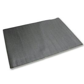 LEADING EDGE リーディングエッジ トレーニング用 フロアマット 150cm×100cm ESMT-150