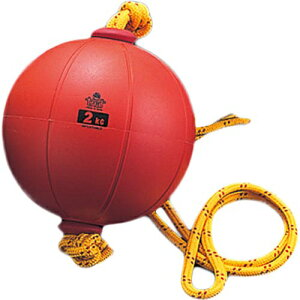 ■1000円OFFクーポン配布中■NISHI ニシスポーツ スウィングメディシンボール ゴム製 2kg T5912