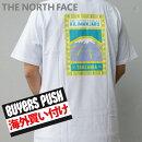 新品ザノースフェイスTHENORTHFACEKILIMANJAROTEEキリマンジャロTシャツWHITEホワイト白メンズBUYERSPUSH