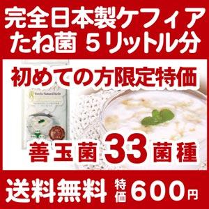 初めての方限定超特価 5包/5リットル分 送料無料 完全日本製 エステリア ナチュラル ケフィア スーパーヨーグルトたね菌 ケフィアグレイン 乳酸菌 酵母 善玉菌 ケフィアヨーグルト