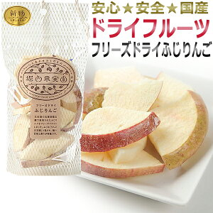 堀内果実園 フリーズドライ ふじりんご 20g / 美容食 ダイエットサポート食品 / T001