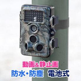 防犯カメラ 電池式 トレイルカメラ 屋外 防水 不可視赤外線 SDカード録画 車 玄関 防犯 セキュリティ目立たない 日本語 EEX-CAM01