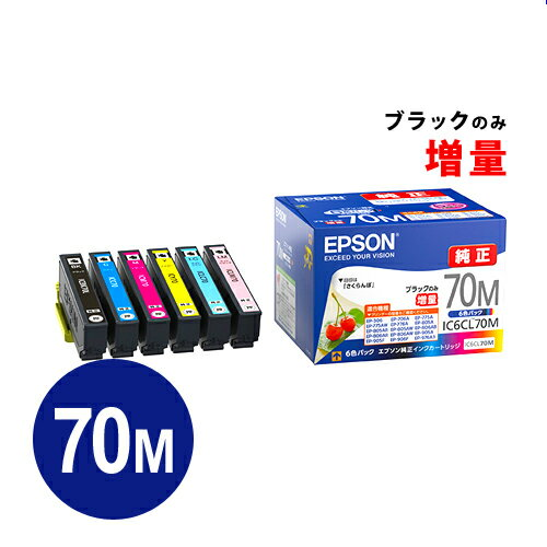 IC6CL70M エプソン インクカートリッジ 6色パック(黒のみ70L)