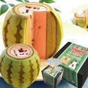 【すいかバウム】 バウムクーヘン|お菓子 かわいい スイカ おもしろ ギフト お土産 千葉県 バームクーヘン スイーツ …