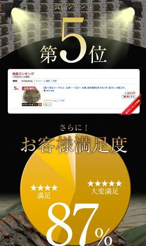 珍味!富山のつまみ★日本海産ホタルイカの素干18尾/ポッキリ送料無料1000円